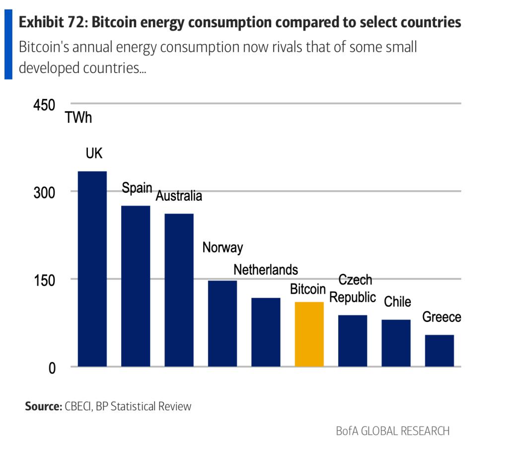 bitcoin ecology